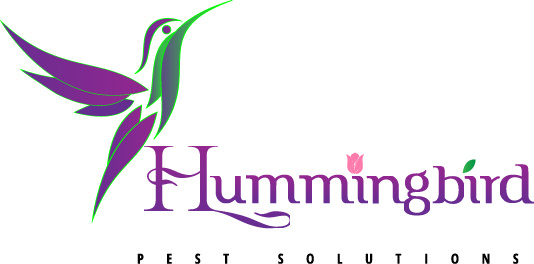 Hummingbird Pest Solutions